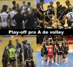 Mes pronostics pour les play-off de volley.