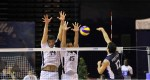 Soir de match : France – Argentine (Ligue mondiale de volley)